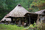 PHILIPPINES (Banaue, Province of Ifugao). 2009. Traditional Ifugao houses near Banaue.