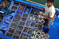 Live reef fish trade in Sai Kung area of Hong Kong.  This is an area in the new territories where people come and pick their live reef fish from floating boats or tanks maintained by a row or restaurants along the wharf.  The fish are cooked for them at the restaurants and this area is very crowded on the weekends.  One of the restaurants has a huge sign of a Napolean Wrasse as their billboard.  The Napolean Wrasse is the first commercially viable reef fish to be listed on CITES.  Even though it is protected, it is still for sale at these restaurants.  Ironically because it is more rare, it is more coveted.  Legislation later this year should make it more difficult to sell this fish.