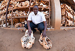 KWS headquaters where they store ele. jaws and Rhino skulls