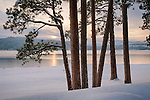 Idaho, Northern, Kootenai County, Coeur d'Alene. Sunset view from Rosenberry Drive in Coeur d'Alene in winter.
