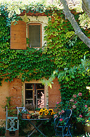 The mellow old walls of the house are smothered in the bright green leaves of a Virginia creeper