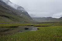 Marshy grassland in Tjäktjavagge on southern side of Tjäktja pass, Kungsleden trail, Lapland, Sweden