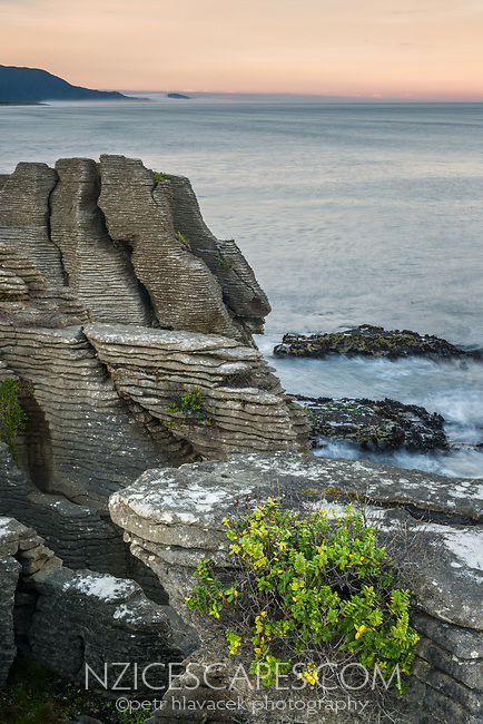 Dawn on coast in Punakaiki with weathered limestone formations, Paparoa National Park, Buller region, West Coast, New Zealand, NZ