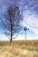 Spinning Farm Windmill in Cornfield with Tree