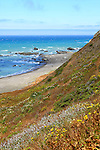 Wildflowers bloom on the hillside overlooking the Pacific Ocean at Punta Gorda on California's Lost Coast. The Lost Coast is in rugged and sparsely populated area in Northern California that includes the Sinkyone Wilderness Area and the Kings Range National Conservation Area. Photographed 07/08.