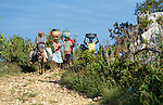 People walk along a road near Despagne, an isolated village in southern Haiti where the Lutheran World Federation has been working with residents to improve their quality of life. They are on their way to the weekly market in a nearby village.