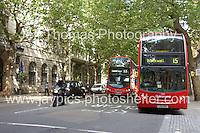 Northumberland avenue.<br /> <br /> <br /> Photo credit: Jeff Thomas - Jeff Thomas Photography - 07837 386244/07837 216676 - www.jaypics.photoshelter.com - thomastwotimes@live.co.uk