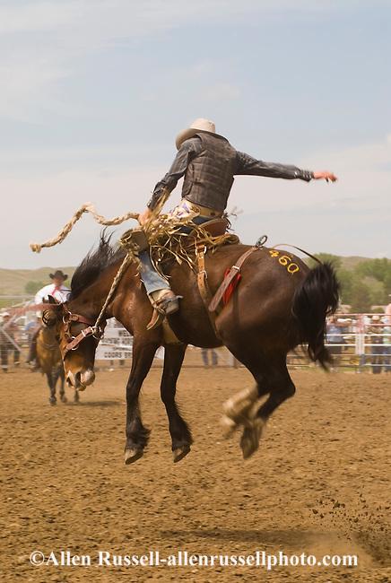 Saddle bronc rider makes successful ride at Miles City Bucking Horse ...