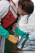 Ike Teuling, radiation safety advisor, on the Greenpeace ship Rainbow Warrior collects sea water samples to monitor radiation levels,  as the ships sails up the eastern coast of Japan on her way to Fukushima, in Japan, Tuesday 3rd May 2011..At coordirnates 36' 40.750 North, 141' 05.375 East, at 6.29am.