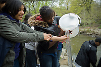 Bronx middle school students volunteer their time in Bronx Park in New York on Tuesday, April 13, 2010. The students  test the Bronx River for cleanliness.  (© Frances M. Roberts)