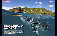 Article in the dutch dive magazine DUIKEN about the controversial whale shark feeding/tourism in Oslob, Philippines