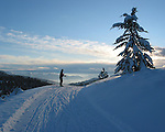A skier pauses on one of the 20 miles of cross-country ski trails at Echo Ridge Nordic Ski Area in the Lake Chelan Valley. The ski area is a Forest Service operated facility.