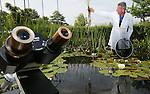 Foto: VidiPhoto<br /> <br /> DEVENTER &ndash; Vijverdokter Erik Brederode (36) van Vijvercentrum Apeldoorn inspecteert woensdag de kwaliteit van het water en de gezondheid van bodem, planten, wortels en dierenleven in een vijver bij Deventer. Brederode: &ldquo;Vijvers zijn helemaal terug van weggeweest. Mensen komen er steeds meer achter dat een vijver heel goed is voor de flora en fauna om het huis. Natuurvijvers in de bebouwde omgeving spelen bovendien een steeds belangrijker rol bij de piekafvoer van regenwater.&rdquo; Tijdens de huidige droogteperiode heeft Brederode het razend druk. Door de lage waterstand in veel tuinvijvers maken mensen zich zorgen over de gezondheid van kikkers, salamanders, waterplanten en het insectenleven. Donderdagavond geeft de vijverdokter op uitnodiging van de afdeling Deventer van tuinvereniging Groei&amp;Bloei tips en voorlichting over het inrichten van een gezonde vijver. Zaterdag en zondag organiseert Groei&amp;Bloei, de grootste tuinvereniging van ons land, het Nationale Open Tuinenweekend, waarbij meer dan 1000 particulieren siertuinen worden opengesteld voor het publiek. Er worden zo&rsquo;n 100.000 bezoekers verwacht.