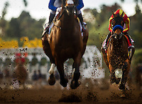 ARCADIA, CA - FEBRUARY 04: Hoppertunity #1, ridden by Flavien Prat secures an early position in the back of the pack in the San Antonio Stakes at Santa Anita Park on February 4, 2017 in Arcadia, California. (Photo by Alex Evers/Eclipse Sportswire/Getty Images)