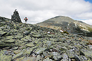 A hiker on Davis Path with Mount Washington in the background in Sargent's Purchase of the New Hampshire White Mountains during the summer months.