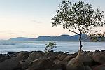 Coastal scenery at Four Mile Beach.  Port Douglas, Queensland, Australia