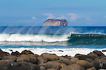 waves breaking along the shore on North Seymour Island in the Galapagos National Park, Galapagos, Ecuador, South America