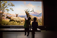 Natural History Museum 11-18-12