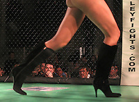 20110128 MMA cage fighting in Charlottesville (Click thumbnails below to purchase)