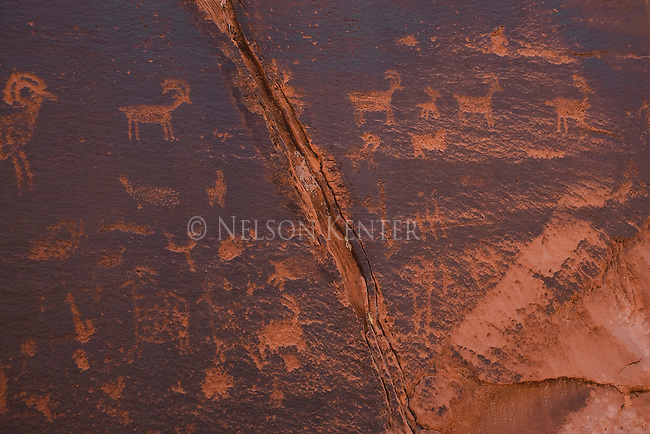 Indian Petroglyphs carved into rock along the Paria River in Arizona