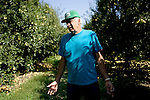 Pear grower Nick Ivicevich describes his difficulty in finding laborers to pick his bumper crop of pears in Lakeport, CA on September 12, 2006. Stepped-up border enforcement has led to a shortage of migrant labor which has left much of the pear crop rotting on the tree and ground in Lake County.