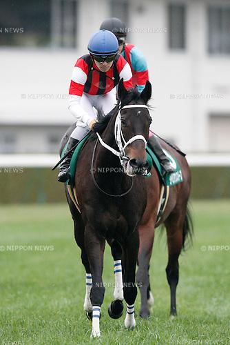 Win Primera (Yuga Kawada),<br /> JANUARY 5, 2016 - Horse Racing :<br /> Win Primera ridden by Yuga Kawada after winning the Sports Nippon Sho Kyoto Kimpai at Kyoto Racecourse in Kyoto, Japan. (Photo by Eiichi Yamane/AFLO)