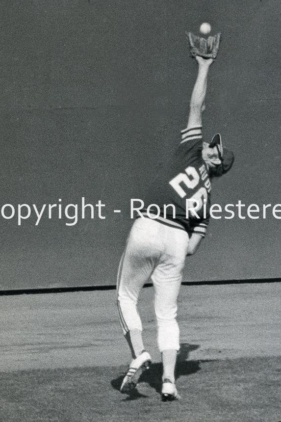 Oakland Athletics left fielder Joe Rudi makes catch.<br />(1973 photo by Ron Riesterer)
