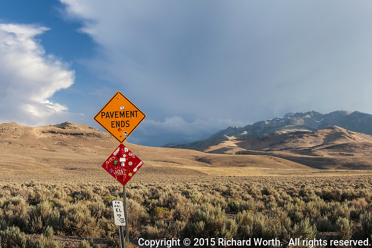 """A battered road sign proclaims """"Pavement Ends"""" while a panoply of nature unfolds behind."""