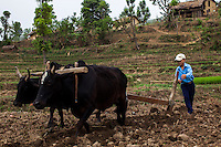 A child works in the paddy fields dressed in his school uniform before going to class in the remote village of Dungi Khola, near Chhinchu, Surkhet district, Western Nepal, on 1st July 2012. In Surkhet, Save the Children partners with Safer Society, a local NGO which advocates for child rights and against child marriage. Photo by Suzanne Lee for Save The Children UK