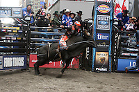 Professional BullRiding(PBR) comes to Times Square to unsuspecting Audiences