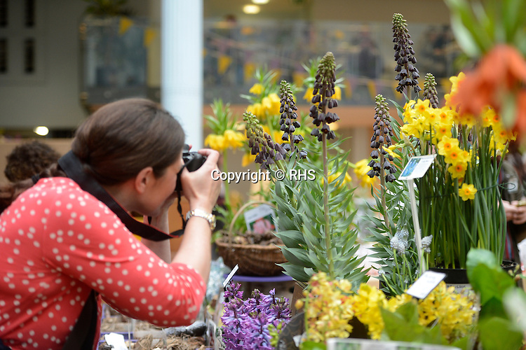 A visitor takes a photograph of a display at an RHS Secret Garden Sunday.