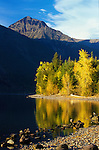 The shore of Lake MacDonald in autumn colors in Glacier National Park in Montana