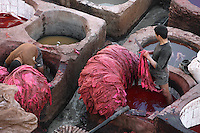 Detail of tanners, one with a knife, in the dyeing pits, Chouara Tannery, Fez, Morocco, pictured on February 25, 2009 in the evening. The Chouara tannery is the largest of the four ancient tanneries in the Medina of Fez where the traditional work of the tanners has remained unchanged since the 14th century. It is composed of numerous dried-earth pits where raw skins are treated, pounded, scraped and dyed. Tanners work in vats filled with various coloured liquid dyes derived from plant sources. Colours change every two weeks, poppy flower for red, mint for green, indigo for blue, chedar tree for brown and saffron for yellow. Fez, Morocco's second largest city, and one of the four imperial cities, was founded in 789 by Idris I on the banks of the River Fez. The oldest university in the world is here and the city is still the Moroccan cultural and spiritual centre. Fez has three sectors: the oldest part, the walled city of Fes-el-Bali, houses Morocco's largest medina and is a UNESCO World Heritage Site;  Fes-el-Jedid was founded in 1244 as a new capital by the Merenid dynasty, and contains the Mellah, or Jewish quarter; Ville Nouvelle was built by the French who took over most of Morocco in 1912 and transferred the capital to Rabat. Picture by Manuel Cohen.