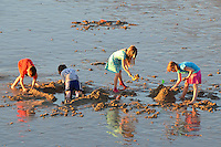 Children build a sand castle at the shoreline at sunset. (Thursday, February, 9, 2012)