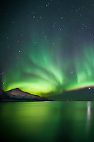 The Aurora Borealis, the spectacular Northern Lights dazzling green light and Venus star above Kvaloya island at Tromso in the Arctic Circle in Northern Norway