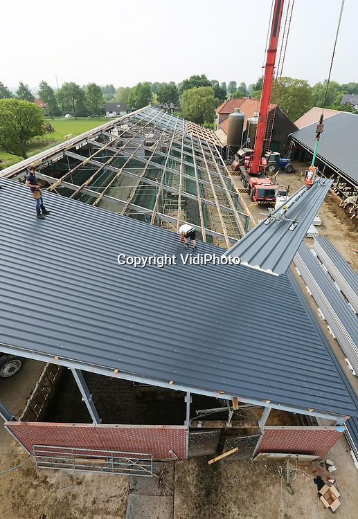 Foto: VidiPhoto<br /> <br /> DODEWAARD - Met een kraan worden dinsdag in snel tempo ecopanelen op het dak van de nieuwe veestal van melkveehouder Jan-Willem van Rooijen uit Dodewaard gehesen. Waar de meeste melkveehouders bouwen op de te verwachten groei, bouwt Van Rooijen omdat zijn huidige stal overbevolkt is. Voordeel is dat de boer nu niet in de financi&euml;le problemen komt omdat hij zijn huidige aantal koeien al had bereikt op 2 juli 2015, het ijkpunt voor het fosfaatstelsel. Veel boeren die op de groei hebben gebouwd, moeten of een deel van het vee verkopen of fosfaatrechten bijkopen. Omdat banken terughoudens zijn met financi&euml;ring is dat laatste vrij lastig. De nieuwe ligboxenstal van Van Rooijen biedt ruimte aan maximaal 190 koeien. De oude stal wordt opgenomen in de nieuwe, die 60 meter lang en 26 meter breed wordt. Van Rooijen verwacht dat hij daardoor meer melk kan produceren. &quot;Meer ruimte, is meer rust, is meer melk.&quot; Over een maand hoopt aannemer J. G. Timmer uit Kesteren gereed te zijn. De koeien mogen pas in de herfst als ze naar binnen gaan ruiken aan hun nieuwe onderkomen.