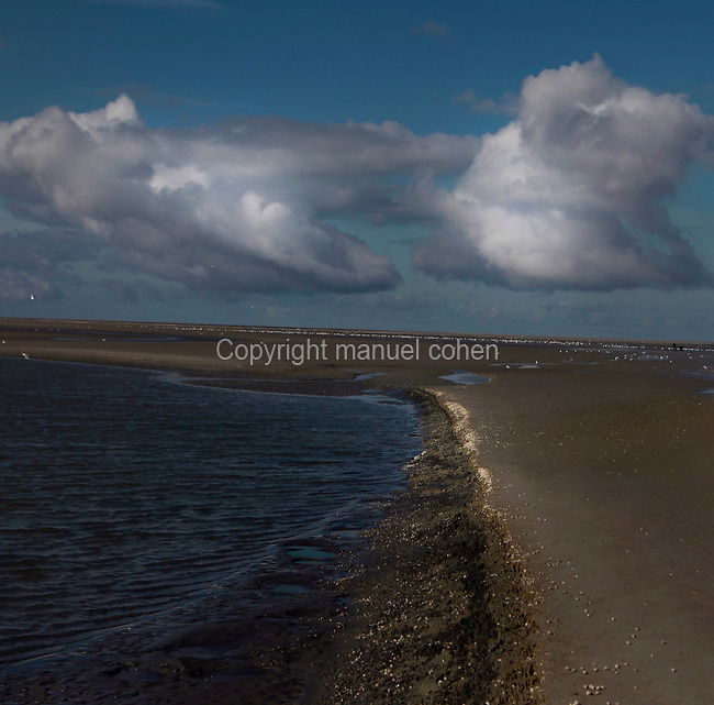 Picture by Manuel Cohen. Low angle view of Le Crotoy beach, Baie de Somme, France, pictured on February 20, 2010 in the morning. Le Crotoy is said to be the only South facing beach in Northern France. Beneath wide skies the channels of seawater snake across the open sands creating natural abstract patterns. Picture by Manuel Cohen.