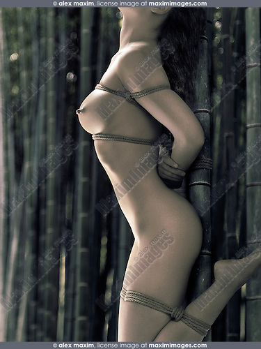 Beautiful asian woman tied naked with Japanese Shibari bondage ropes to a bamboo in a forest
