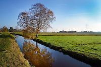 Naturschutzgebiet Moorguertel: EUROPA, DEUTSCHLAND, HAMBURG, (EUROPE, GERMANY), 07.11.2014: Naturschutzgebiet Moorguertel  liegt in Hamburg in der Suederelbmarsch im Alten Land zwischen Neugraben-Fischbek und Neu Wulmstorf.
