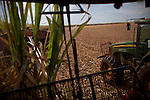 ITUMBIARA, BRAZIL - OCTOBER 16:<br /> Driver Jo&atilde;o Carolos da Silva operates a mechanized harvester, for cutting sugarcane stalks, near the city of Itumbiara, in Goias state, Brazil, on Wednesday, Oct. 16, 2013. Since the US recently passed a number of regulations and standards for cars and dropped tariffs that were in place for decades against Brazilian sugar, Brazilian ethanol is now flowing to the U.S., and the ethanol industry in the country is consolidating and ramping up for a new era.
