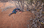A woman pauses to rest in the shadow of a small tree while trekking across eastern Kenya near the Somali border. The Somali woman left her home a month earlier, fleeing drought and conflict, and heading to the Dadaab refugee complex. Already the world's world's largest refugee settlement, Dadaab has swelled in recent weeks with tens of thousands of recent arrivals from Somalia.