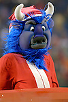 17 December 2005: Buffalo Bills mascot Billy Buffalo is in Christmas attire prior to the start of play against Denver Broncos at Ralph Wilson Stadium in Orchard Park, NY. The Broncos defeated the Bills 28-17. .Mandatory Photo Credit: Ed Wolfstein
