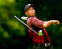 Tiger Woods, 2003 Western Open. Photograph © 2003 Darren Carroll