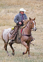 Cowboy riding horse through field