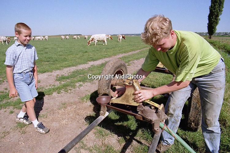 """Foto: VidiPhoto..DODEWAARD - Het is dorstig weer. Ook voor koeien. Veehouder Jan Willem van Rooijen uit Dodewaard zet een kwartet weidepompen klaar voor zijn 110 .melkkoeien. De dieren drinken met dit weer zo'n 80 liter water per dag. """"En zonder water zijn de beesten aan het eind van de dag stapelgek"""", aldus de boer. Bovendien: Zonder water, geen melk."""