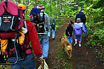 October 13, 2003 - A group of Portland-area chefs and their entourage set out on the hunt for Chanterel mushrooms north of Carson, Washington, in the Gifford Pinchot National Forest.