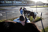 """Dublin, Ireland, January 6, 2011:.Young boys and their horses on Bell Camp housing estate..Since the beginning of crisis, between 10 and 20 thousand horses have become homeless or went in the hands of the youths in urban areas. Lots of Irish people who used to buy horses for fun during the boom years of """"Celtic Tiger"""", now are abandoning them faced with expenditure of 35 Euro a week to properly maintain a horse. This animal previously worth 2000 Euro now can be purchased for as little as 80 Euro. New owners keep their horses in city greens, city ruins, or their house gardens, in very bad conditions. Most do not get much food, many are starving, dying, being mistreated..(Photo by Piotr Malecki / Napo Images)..Dublin, Irlandia, 6/01/2011:.Chlopcy i ich konie na osiedlu mieszkaniowym Bell Camp..Od poczatku kryzysu od 10 do 20 tysiecy koni zostalo wyrzuconych na ulice przez wlascicieli nie chcacych placic okolo 35 Euro/tydzien za ich utrzymanie. Wpadaja one czesto w rece mlodziezy z ubogich dzielnic miasta, ktora handluje nimi, bije, glodzi, trzyma w skrajnie trudnych warunkach, w przydomowych ogrodkach lub ruinach budynkow i szaleje na nich po miescie. Kon, ktory byl wart 2000 Euro teraz moze byc kupiony za 80. .Fot: Piotr Malecki / Napo Images."""