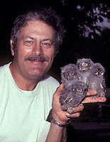 Ron Austing holding four Screech Owl fledglings (Megascops asio), 1987 (Ohio)