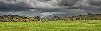 Brooding skies over coastal farmland near Karamea, Kahurangi National Park, West Coast, Buller Region, New Zealand