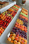 Late Summer fruit at Feil Fruit Stand south of Wenatchee, WA.  Peaches, Plums, Nectarines.